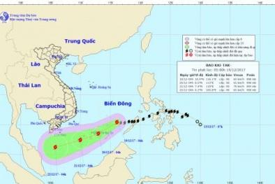 Tin mới nhất về bão Kai-tak trên Biển Đông: Gió giật cấp 11 và khả năng mạnh thêm