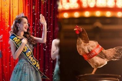 Bị chê 'hát như gà', Chi Pu 'chơi lầy' đưa ngay hình ảnh gà mái vào MV mới đầy ẩn ý