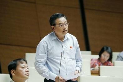 Tân Chủ tịch Tập đoàn dầu khí Việt Nam mới được bổ nhiệm là ai?