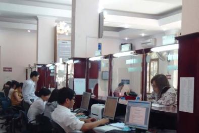 Sở Tư pháp Bắc Giang đẩy mạnh áp dụng ISO 9001:2008 vào cơ quan hành chính