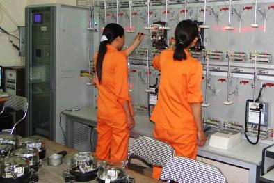 Thực hành tốt 5S tại Công ty Điện lực Quảng Ninh đem lại nhiều lợi ích