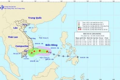 Tin bão mới nhất: Bão số 1 giật cấp 10 uy hiếp các tỉnh Phú Yên - Bình Thuận