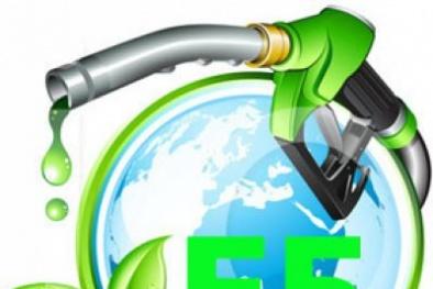 Chính phủ khuyến khích người tiêu dùng sử dụng xăng sinh học