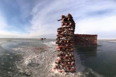 Video: Kinh ngạc bức tường xây bằng 2000 con cá giữa hồ băng