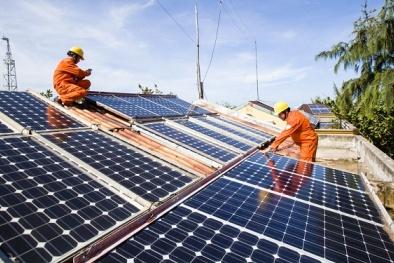 Ninh Thuận: Khởi công nhà máy điện mặt trời với mức đầu tư 800 tỷ đồng