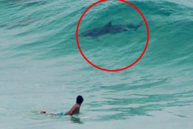 Bí ẩn sinh vật lạ xuất hiện trên bãi biển gây nhiều tranh cãi
