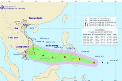 Tin bão mới nhất: Cơn bão Sanba giật cấp 11 thẳng tiến về biển Đông