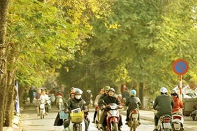 Dự báo thời tiết: Hôm nay Hà Nội có mưa nhỏ vài nơi, nắng về trưa chiều