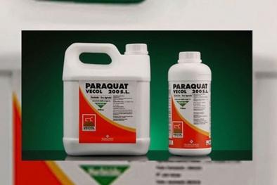 Ngộ độc thuốc diệt cỏ Paraquat không ngừng tăng dù đã bị cấm, lỗ hổng ở đâu?