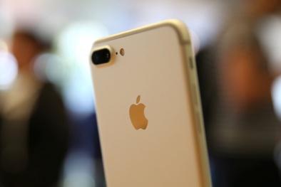 Xếp hạng các thế hệ iPhone: iPhone X 'kém xa' iPhone7 Plus