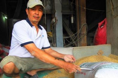 Tin mới nhất về chủ nhân của số vàng bỏ quên trong bao lúa ở Bình Đình