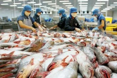 Lộ diện đại gia thâu tóm công ty thua lỗ trăm tỷ của 'vua cá tra' Hùng Vương