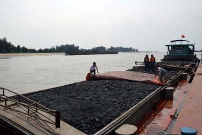 Quảng Ninh: Bắt giữ tàu vận chuyển 1.000 tấn than có dấu hiệu vi phạm