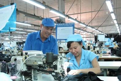 Chuyên gia tiết lộ 'bí quyết' tăng năng suất lao động cho doanh nghiệp nhỏ và vừa