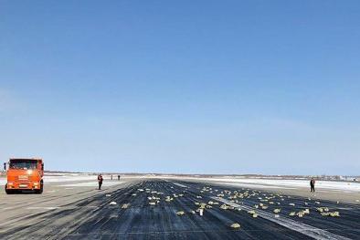 Hy hữu: Máy bay bị bung cửa, hơn 3,4 tấn vàng và kim cương rơi xuống đất