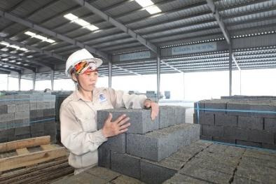 Xây dựng chính sách và tiêu chuẩn khuyến khích, chế tạo thiết bị gạch không nung
