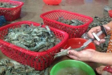 Quảng Ninh: Bắt giữ 360 kg chất phụ gia, có nguồn gốc xuất xứ từ Trung Quốc