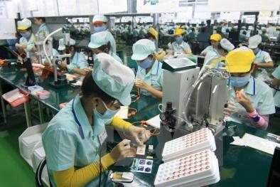 Việt Nam trước ngưỡng cửa CPTPP: Chất lượng nguồn nhân lực là 'sống còn'