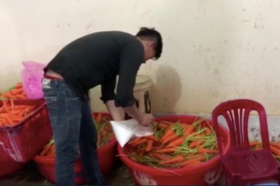 Kinh hoàng phát hiện 4 cơ sở rửa hơn 6 tấn củ cải, cà rốt bằng hóa chất công nghiệp