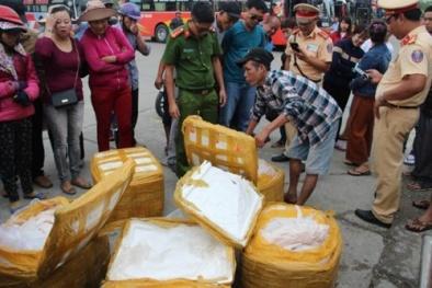 Thừa thiên-Huế: Gần 500 kg heo sữa hôi thối đang trên đường đến 'bàn ăn'
