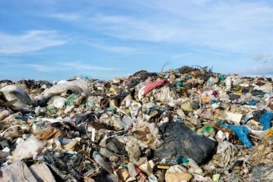 Tìm ra chất xúc tác sinh học Enzym có thể 'ăn nhựa'