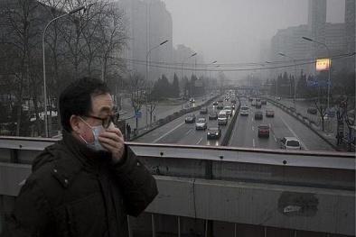 Hơn 95% dân số thế giới đang phải hít thở bầu không khí ô nhiễm