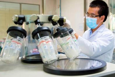 Bình Thuận: Phát hiện 4/4 mẫu xăng không đạt chất lượng khi thử nghiệm