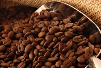 Cần sớm ban hành quy chuẩn cà phê
