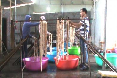Quảng Ninh: Bắt quả tang cơ sở chế biến hơn 1 tấn lòng lợn không đảm bảo vệ sinh