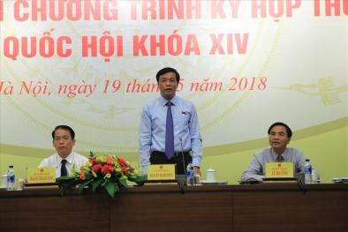 Cho thôi ĐBQH với bà Phan Thị Mỹ Thanh: Tổng thư ký Quốc hội nói gì?