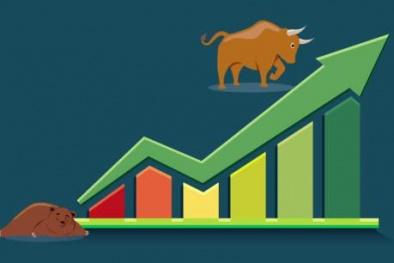 Chứng khoán ngày 11/6: Blue chip kéo Vn - Index tăng dù mã giảm điểm áp đảo thị trường