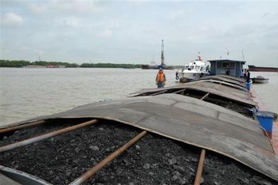 Tạm giữ hơn 300 tấn than không rõ nguồn gốc