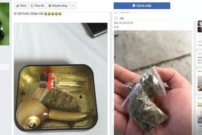 Kiểm soát, ngăn chặn hoạt động mua bán chất ma túy trên mạng internet