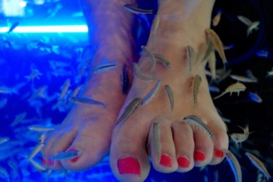Du khách bị rụng sạch móng chân khi dùng cá massage