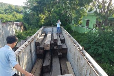 Gia Lai: Bắt giữ xe container chở gần 50m3 gỗ lậu, đề nghị khởi tố vụ án