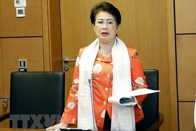 Vì sao chồng cựu Phó bí thư Đồng Nai Phan Thị Mỹ Thanh bị công an điều tra?