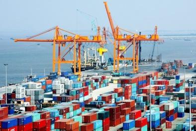 Chuyên gia kinh tế Phạm Chi Lan: Cần có gói cải cách toàn diện 'ngang dọc' đột phá xuất khẩu
