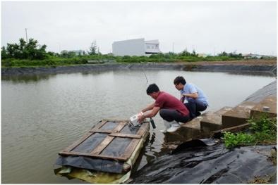 Áp dụng công nghệ cao nâng cao năng suất chất lượng nuôi tôm tại Bạc Liêu