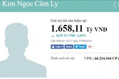 Danh tính 6 nữ đại gia giấu mặt sở hữu nghìn tỷ, đứng top đầu người giàu Việt