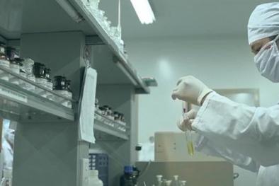 Nam Định: DN được hưởng lợi từ áp dụng cải tiến năng suất chất lượng