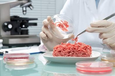 Nhiều loại thịt tại các cửa hàng bán lẻ nhiễm khuẩn E.coli đa kháng thuốc