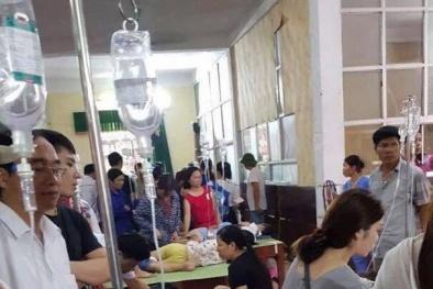 Ninh Bình: Làm rõ sự việc gần 200 học sinh tiểu học nghi bị ngộ độc thực phẩm