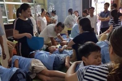 Ninh Bình: Tiết lộ nguyên nhân khiến gần 300 học sinh ngộ độc thực phẩm