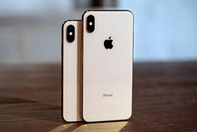Bí kíp phát hiện iPhone XS và XS Max 'núp bóng' hàng quốc tế đang bán giá rẻ giật mình