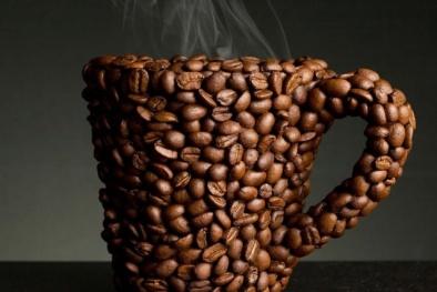 Chưa có tiêu chuẩn về 'Cà phê tươi'