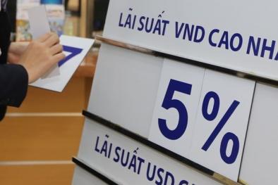 Chuyên gia kinh tế: Các ngân hàng 'ồ ạt' tăng lãi suất tiền gửi dịp cuối năm là bình thường