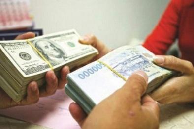 Từ vụ đổi 100 USD bị phạt 90 triệu: Đại lý nào được phép đổi ngoại tệ mà không bị phạt?