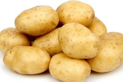 Sai lầm nghiêm trọng nếu bảo quản khoai tây trong tủ lạnh