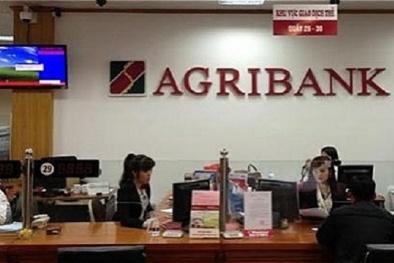 Ngân hàng nhà nước cam kết đảm bảo tiền gửi cho khách hàng Agribank