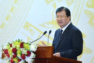 Phó Thủ tướng: Phải nâng cao hiệu quả, tiềm lực của DNNN